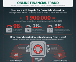 Online Financial Fraud
